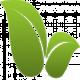 Купить межкомнатные двери с PVC покрытие Гринлайн/Greenline